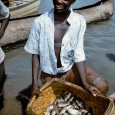 21 Aug 05 WorldFish Centre Calling fisheries critical for nourishing the poor and for helping Africa cope with the health, economic and social devastation of problems like HIV and AIDS, […]